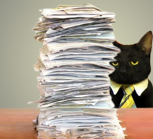 Business cat with stack of paper
